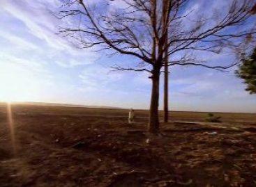 Dienstagsmusik: Cinnamon Chasers – Luv Deluxe