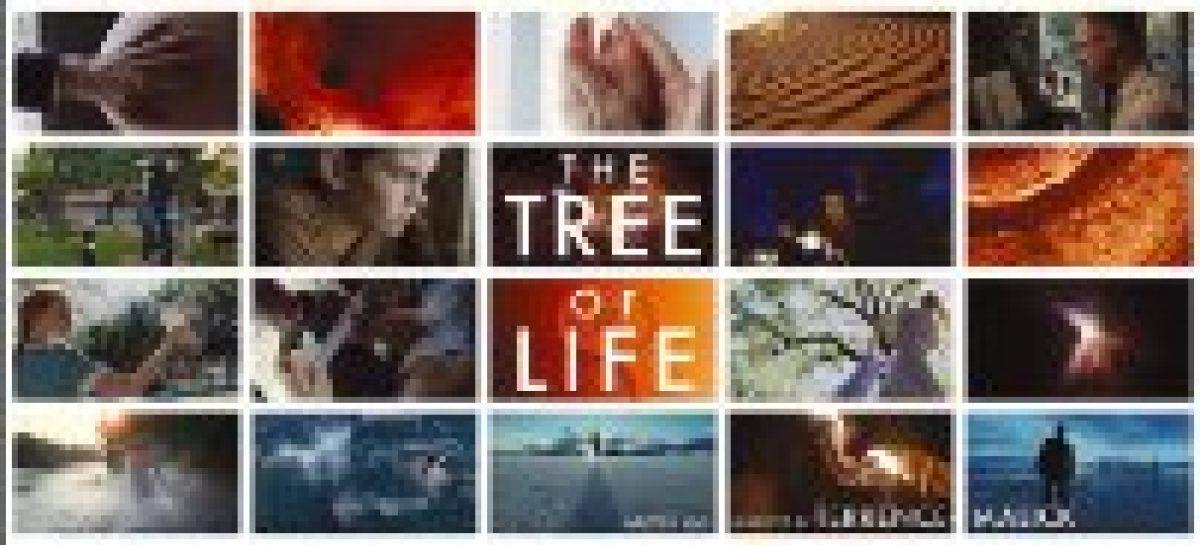 "Kino: ""The Tree of Life"" von Terrence Malick preisgekrönt"