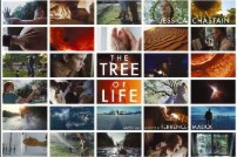 "Kino: ""The Tree of Life"" von Terrence Malick preisgekrönt"